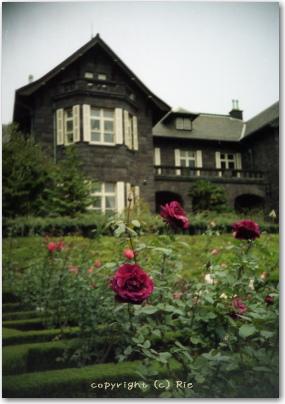 薔薇と洋館