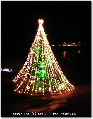 宮ヶ瀬クリスマス