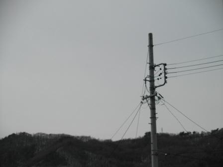 P2010647.jpg