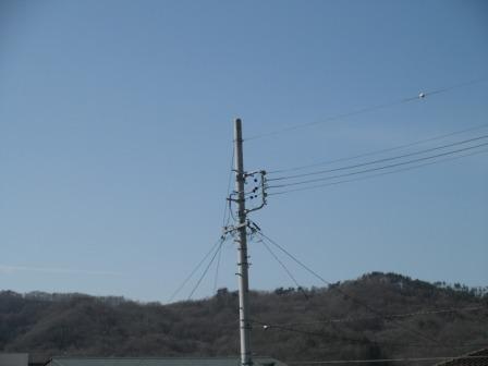 P3200946.jpg
