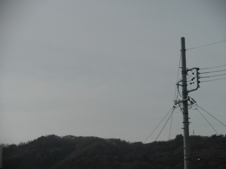PB270350.jpg
