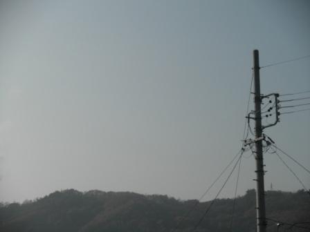 PB300387.jpg