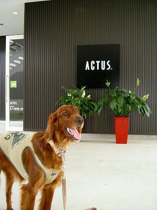 ACUTS宇都宮2