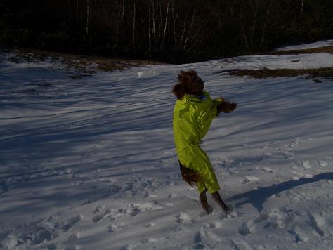 アラン君と雪遊び 010