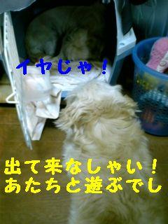 070711_201435-1.jpg