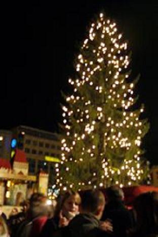 P1020239ドレスデン クリスマスツリー1