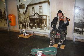 P1020899 ハンガリー(ブダペスト)わんこバイオリン弾き