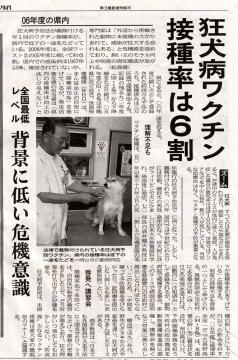 ある獣医師と柴犬