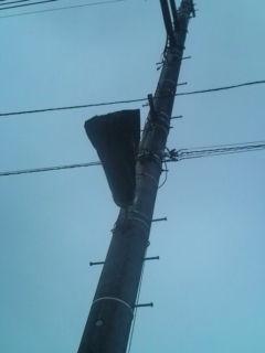 電柱のライト