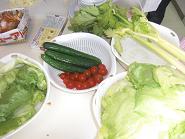 ブログ用野菜