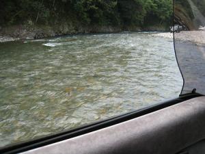 川を渡っちゃった!