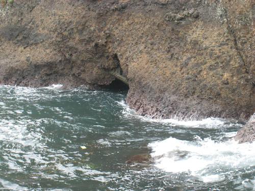汐吹き岩②