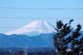 朝から富士山