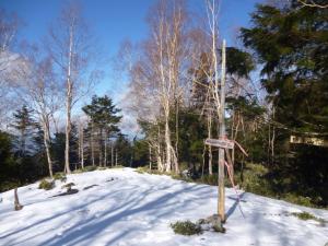 シャウゾ山の山頂