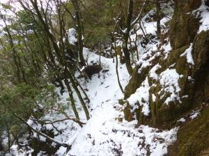 鈴鹿の最南 稜線歩き♪