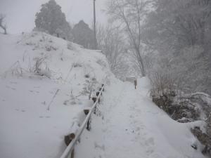 水分道で金剛山