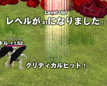2007110203.jpg