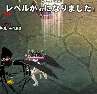2007111403.jpg