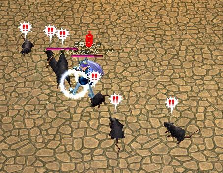 黒クマネズミ6匹