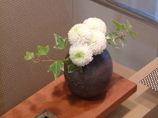flower0613_2011.jpg