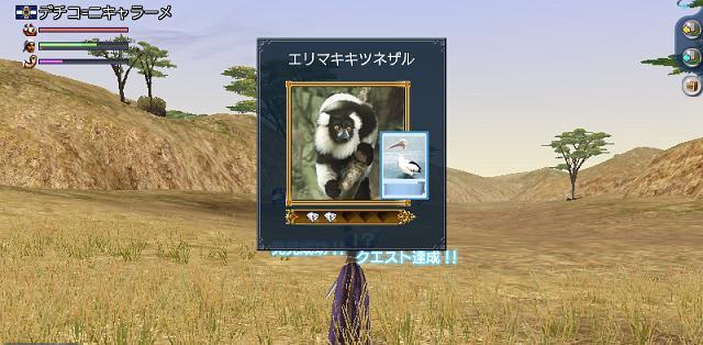 erinoiro10.jpg