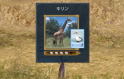 gokakitagaeri1.jpg