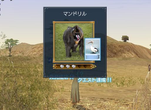 osorosiikaonosaru4.jpg