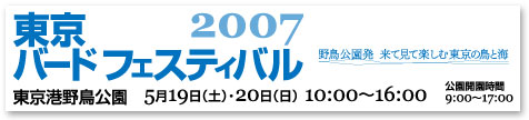 TBF2007