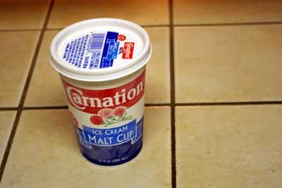 カーネーションのアイスクリーム