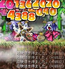 20070501080445.jpg