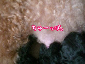 20070706191337.jpg