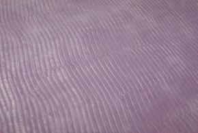 No.45薄紫トカゲ柄の革