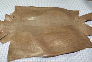 リザード(トカゲ)の革