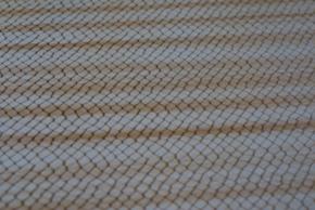 No.35リアルシマヘビ柄の革