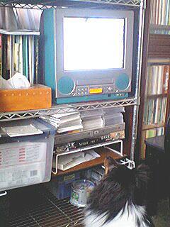 20070522study.jpg