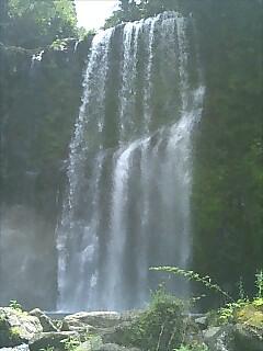 大分旅行・桜滝