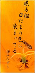 ヒダマリ2