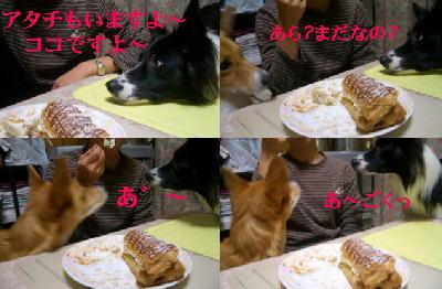 お菓子フェア2