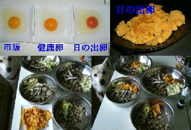 卵入りフード