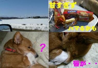 清川へ-2