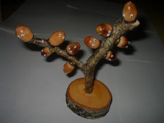 どんぐり君の生る木2