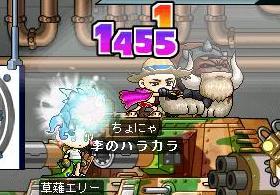 Maple101523.jpg