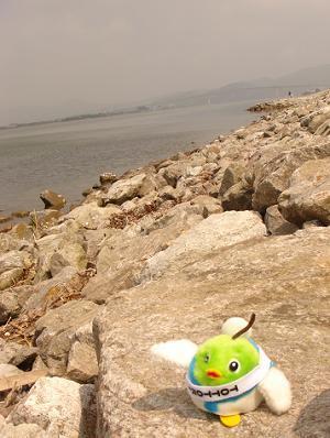 中海クルージング