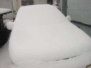 予報どおりの大雪