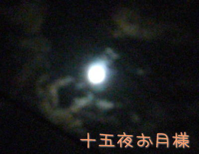 9_25.jpg