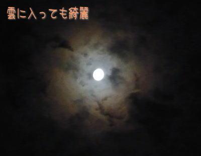 9_25_2.jpg