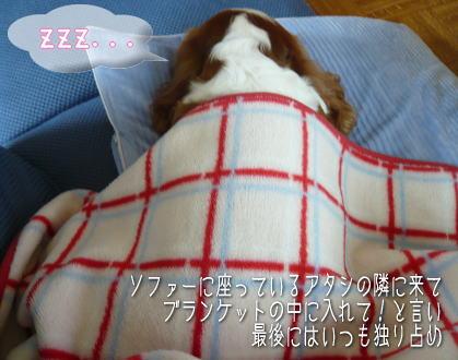 nene_10_251.jpg