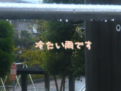 nene_12_13.jpg