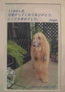 Prince ANGE