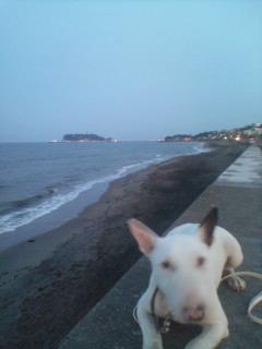 夜明け前の七里ヶ浜
